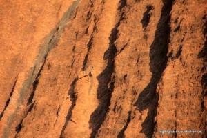 Der Uluru (Ayers Rock) aus der Nähe